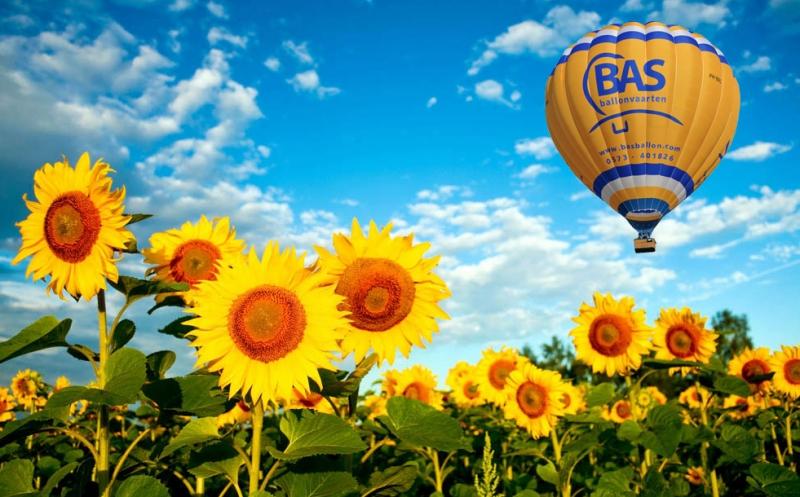 Ochtend ballonvaart